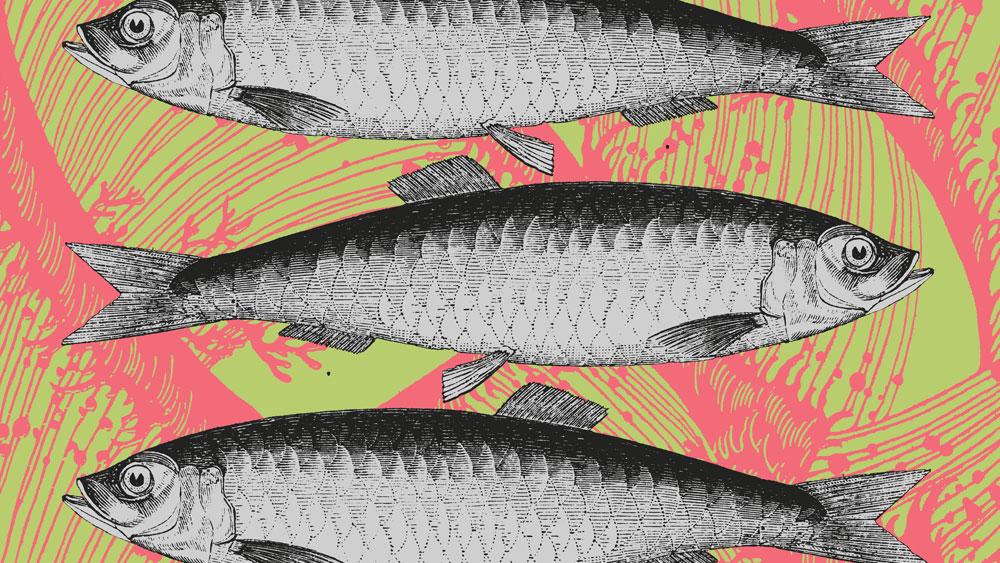 Pescao Placemats