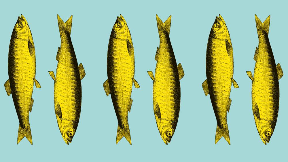 Pescao napkins